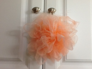 Life saving loofah..now retired