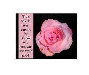 rose harm...good